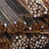 Hardhouten palen van cloeziana hout