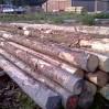houten heipalen