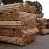 geschilde houten palen