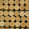 houten daksporen