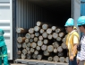 cloeziana-container