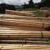 voorraad houten daksporen